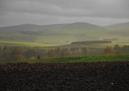 Fields and Hills1