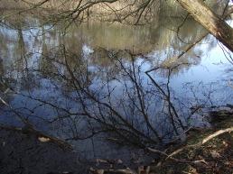 Lake 14