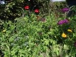 flowerbed3