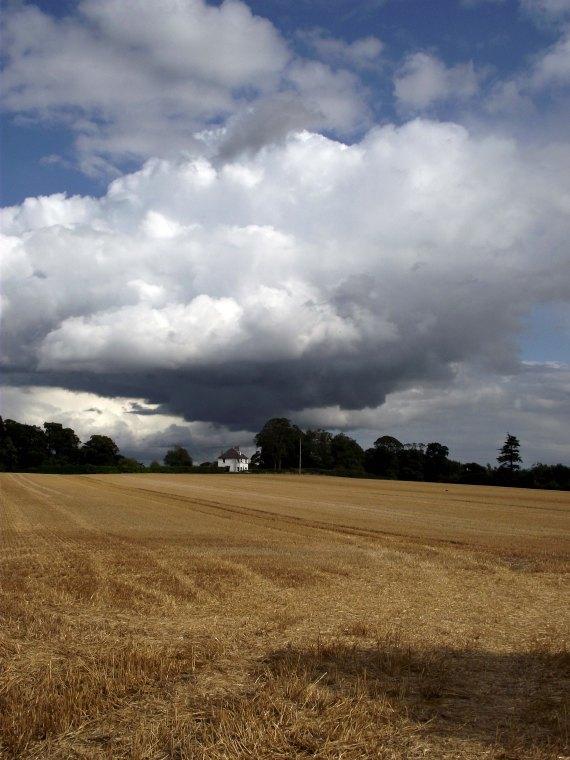 august field