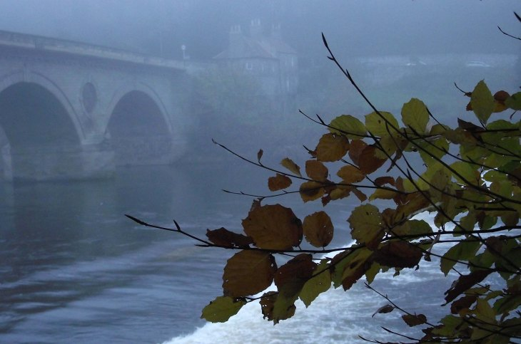 mist, bridge, marriage house
