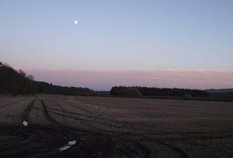 Field & Moon