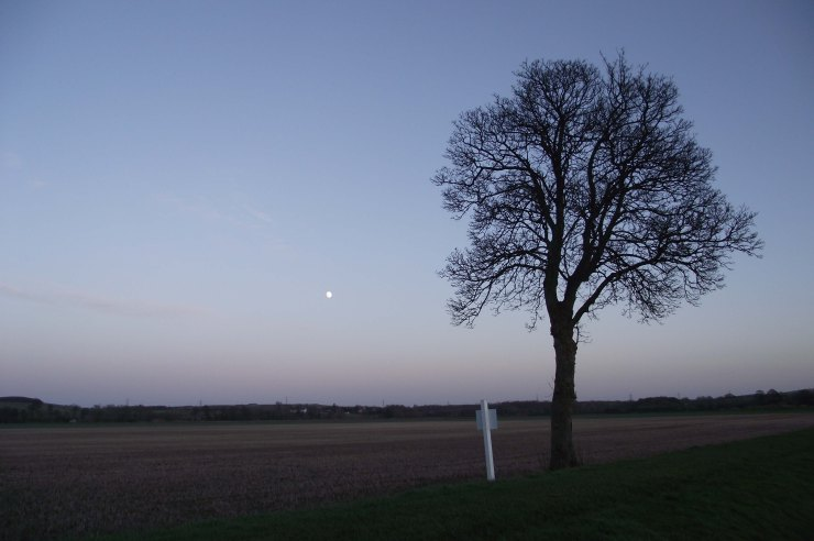 Moon over Stubbel Field