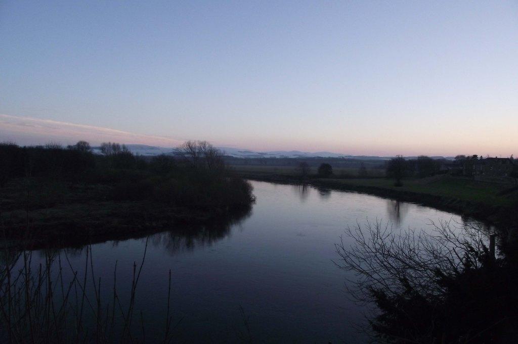 evening, tweed 2