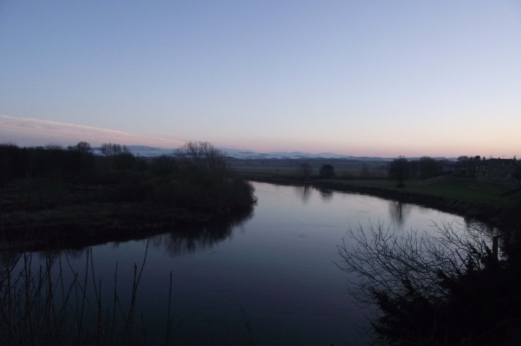 evening, tweed 2