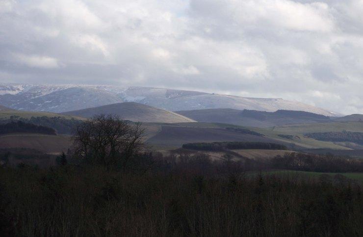bluerememberedhills