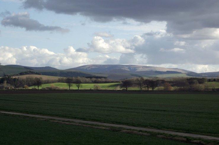 March Fields 2
