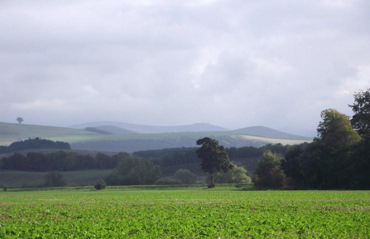 Cheviot Hills 2