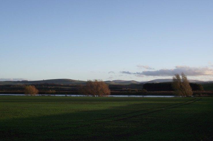 Field by River Tweed