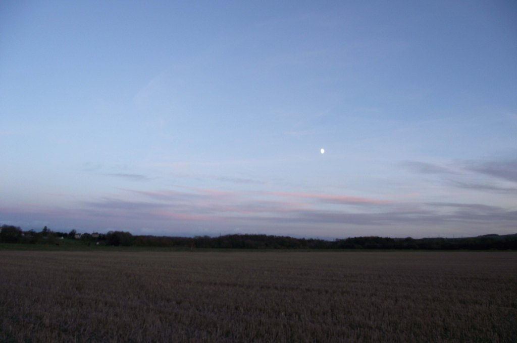Moon Over the Lees