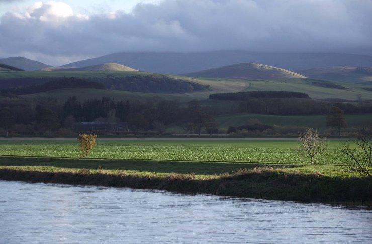 Tweed, Lees, Cheviots