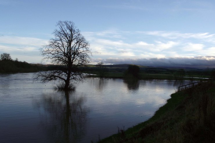 January Floodwater 1