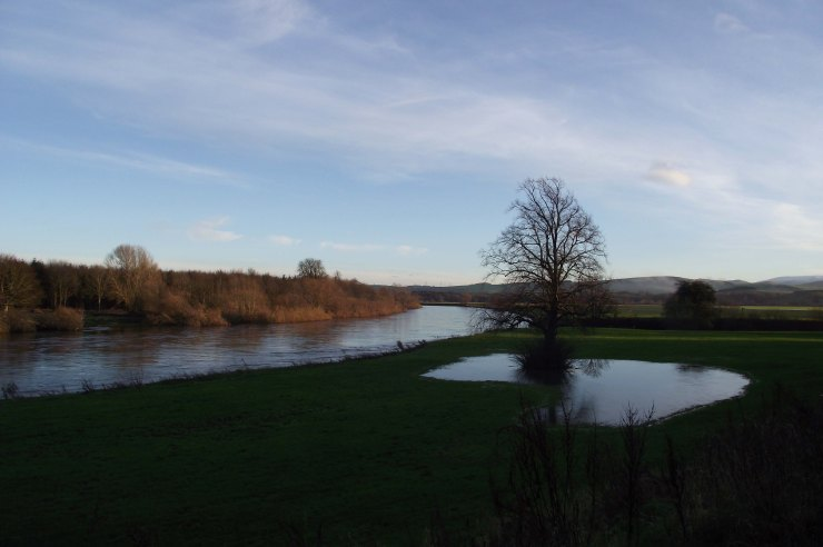Floodwater by River Tweed