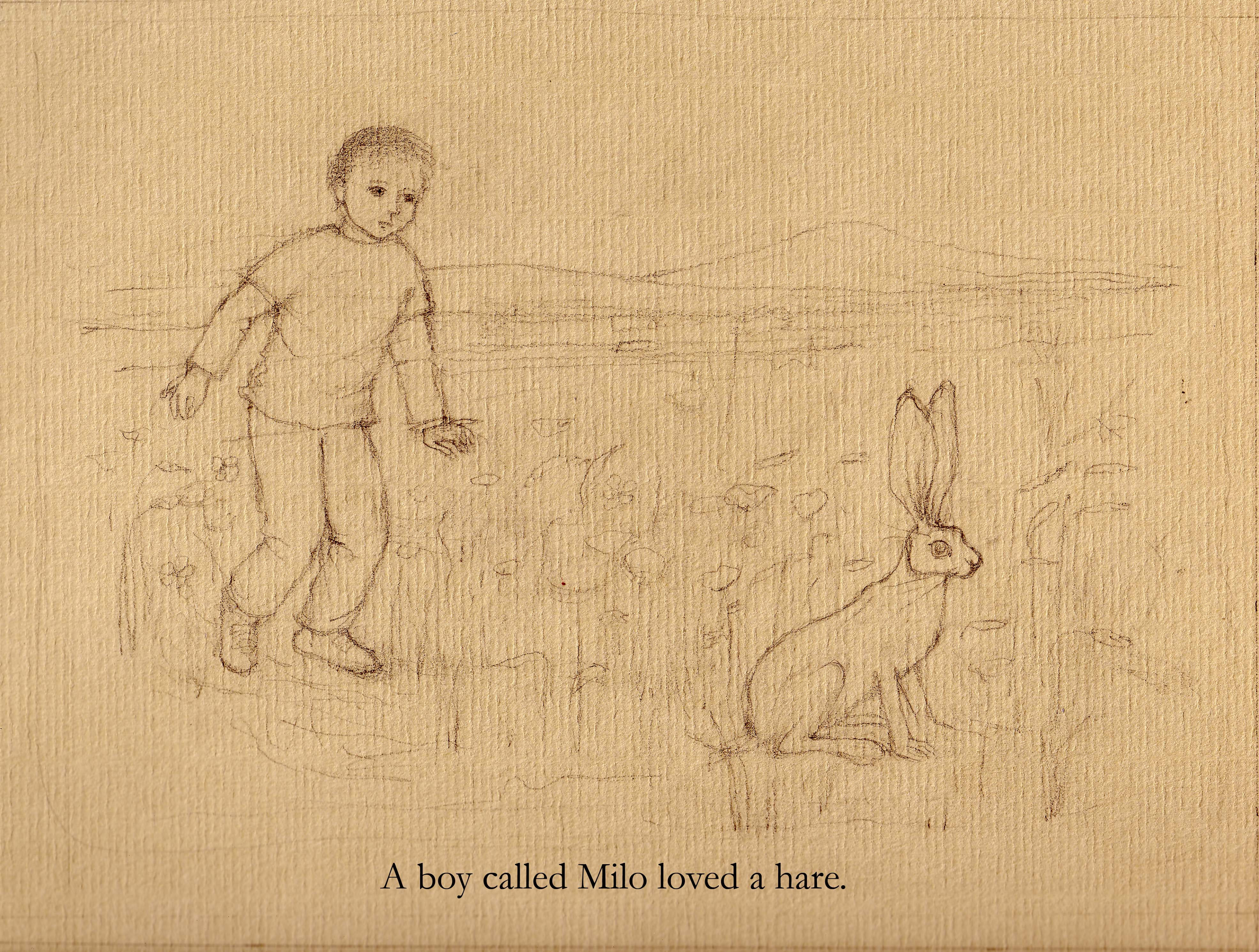 Midnight Hare drawing