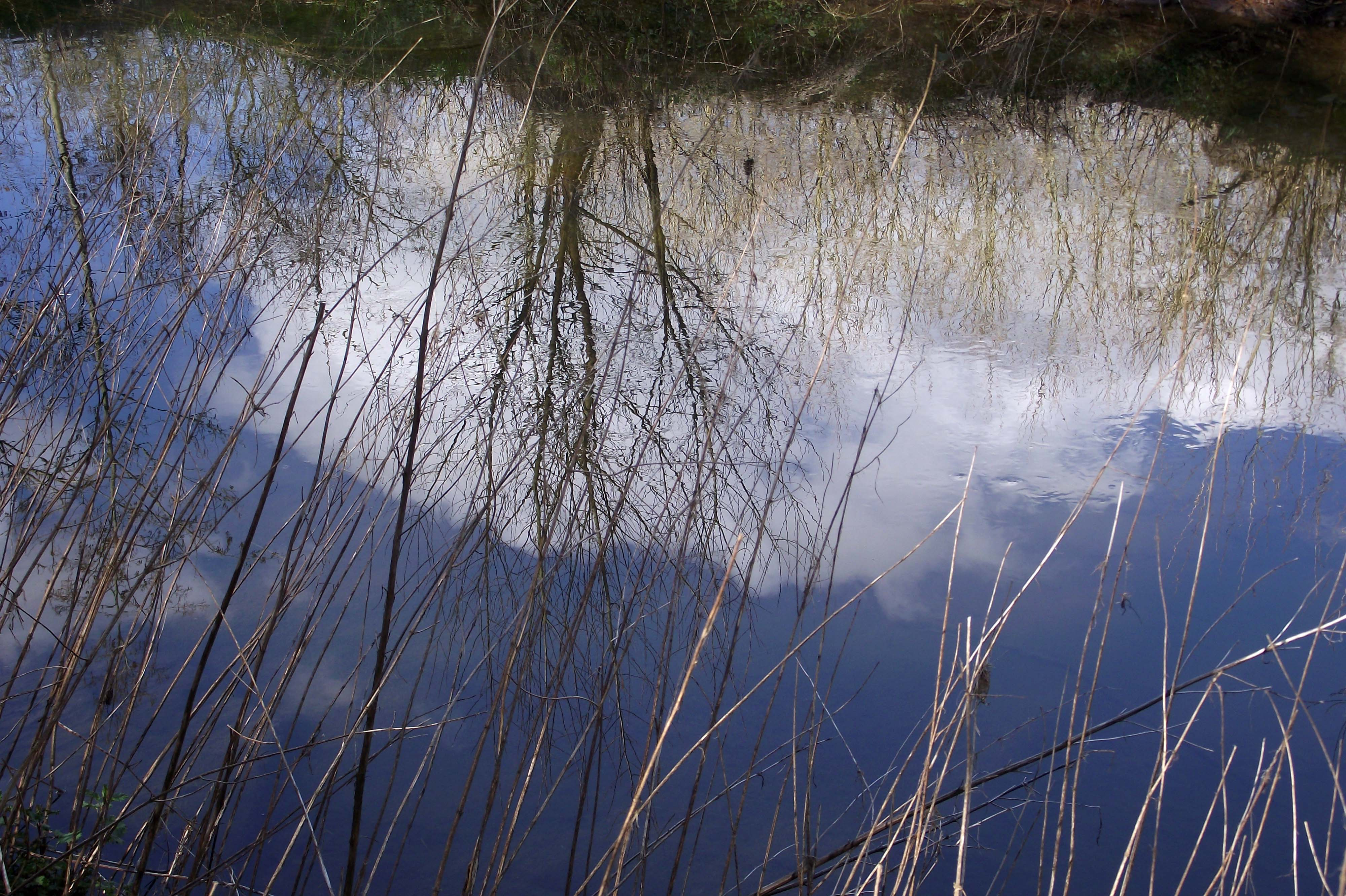 leetwater1