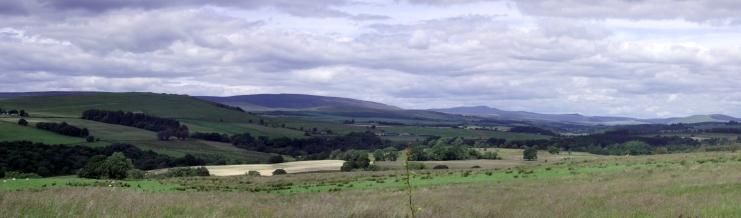 Liddesdale Landscape 2